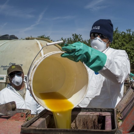 A worker pours a bucket of pesticide into a machine to be sprayed on almond trees at Del Bosque Farms Inc. in Firebaugh, California, U.S., on Monday, April 6, 2015. California lawmakers approved legislation sought by Governor Jerry Brown that authorizes spending $1 billion to manage the drought gripping the most populous U.S. state for a fourth year. Photographer: David Paul Morris/Bloomberg via Getty Images