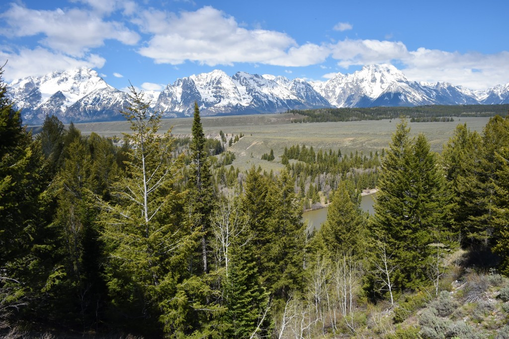 A view of the Teton Mountain Range in Grand Teton National Park in Wyoming on May 11, 2016.  / AFP / MLADEN ANTONOV        (Photo credit should read MLADEN ANTONOV/AFP/Getty Images)