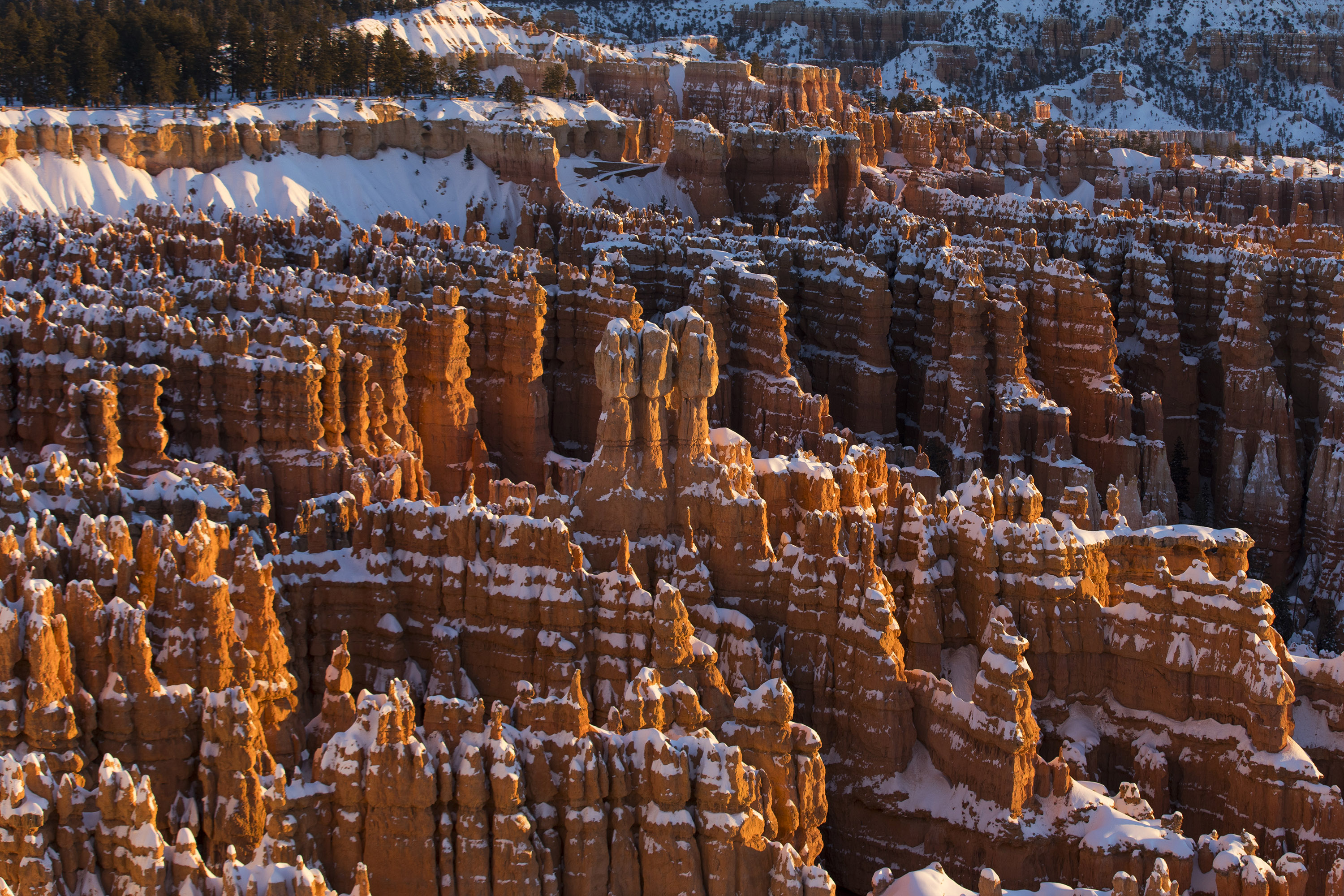 Bryce Canyon National Park on Jan. 28, 2017 in Bryce Canyon City, Utah. (Ric Tapia via AP)