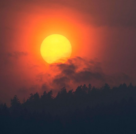 Smoke rises in front of the sun as a wildfire burns near Little Fort, British Columbia. Tuesday, July 11, 2017. Over a 100 wildfires are burning throughout British Columbia forcing thousands of residents to be on evacuation standby. (Jonathan Hayward/The Canadian Press via AP)